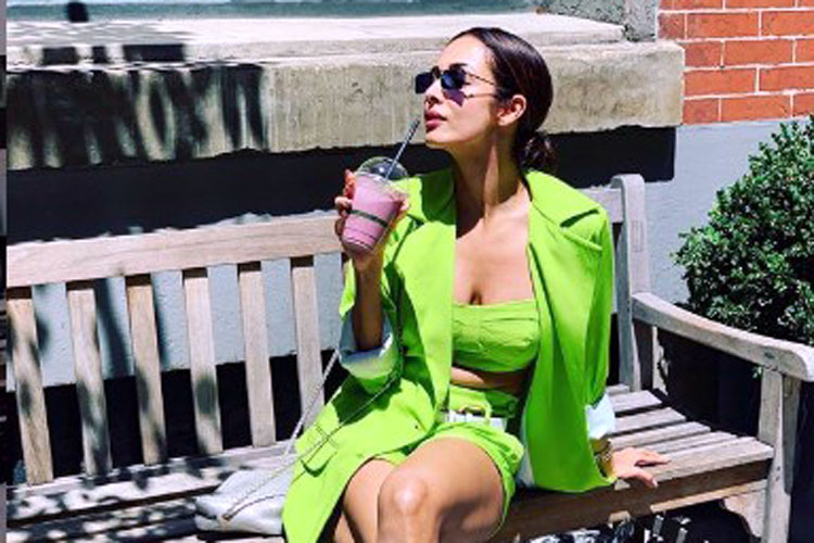 Malaika Arora And Arjun Kapoor's New York Holiday Pictures Leaked?